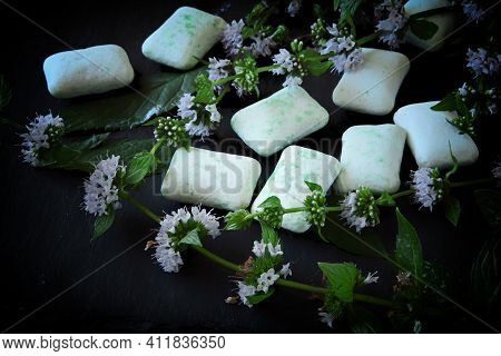 Chewing Gum Pads And Mint Leaves On A Dark Background. Organic Chewing Gum.