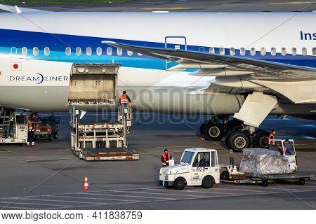 All Nippon Airways (ana) Boeing 787 Dreamliner Passenger Plane Unloaded At Dusseldorf Airport. Germa