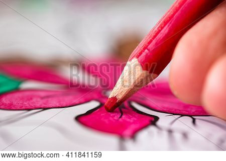 A Close Up Macro Portrait Of Fingers Of A Hand Holding A Red Wooden Pencil Coloring In A Flower In A