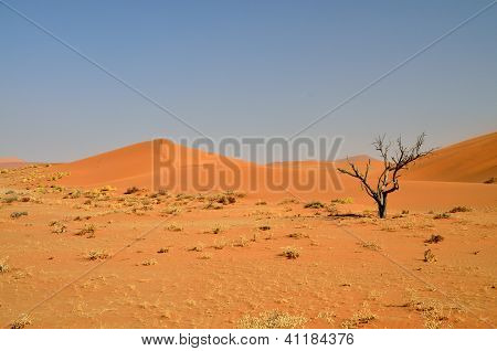Red desert landscape of Namibia