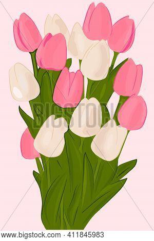 Bouquet Of Pink Tulips. Vector Bunch Of Garden Flowers.delicate Beautiful Tulips.