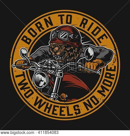 Angry Bear Biker Round Vintage Print With Grizzly Motorcyclist Riding Motorbike On Dark Background I
