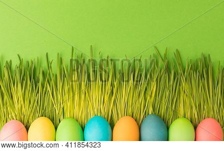 Spring Easter Concept. Multicolored Chicken-colored Eggs Lie On The Luscious Young Grass.
