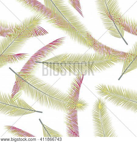 Tropical Feather Plumage Vector Ornament. Bohemian Illustration. Airy Natural Feather Plumage Textil