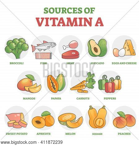 Sources Of Vitamin A As Healthy Nutrition Food Examples In Outline Diagram