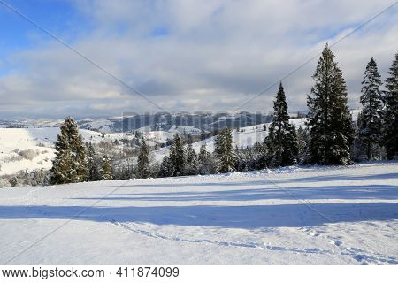 nice winter landscape in Carpathian mountains, Ukraine