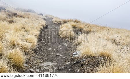 Deserted Mountain Road In The Morning Fog, Nepal, Himalayas