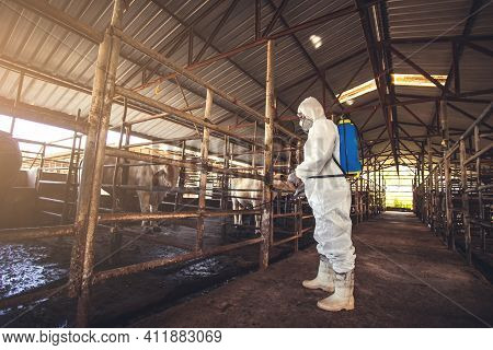 People Wearing Personal Protective Equipment Or Ppe With Spraying Disinfectant For Protection Pandem
