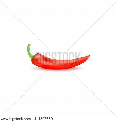 Red Hot Chili Pepper A Vector Realistic 3d Isolated Illustration.