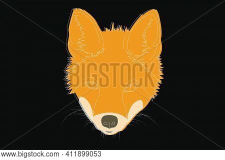 Fox Drawing. Fox Head Full Face. Simple Linear Drawing Of A Fox. Wild Animal