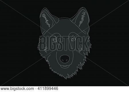 Drawing Of A Wolf. Head Of A Wolf Full Face. Simple Linear Drawing Of A Wolf. Wild Animal
