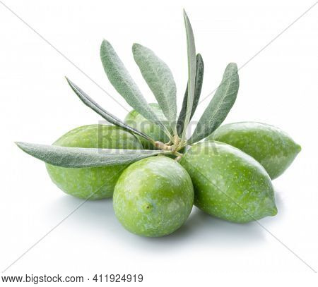 Green natural olives with leaves isolated on a white background.