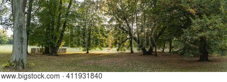 Beautiful Autumn Scenic In October In Public Park In Germany