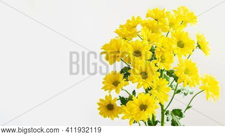 Yellow Chrysanthemums Bouquet On The White Background Isolated. Nice Flowers For Greeting With Mothe