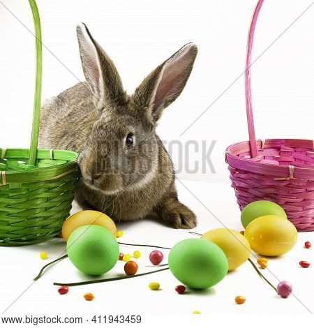 Easter Background, Gray Easter Bunny On The Background Of Multi-colored Eggs And Baskets Of Decorati