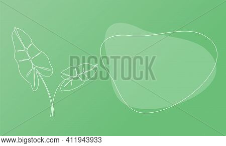 Nature Template Presentation Design With Palm Leaves. Template For Web Banner With Botany Plants Tem