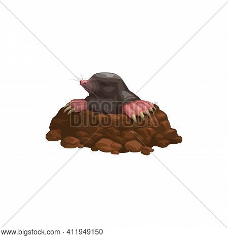 Mole Icon, Rodent Animals Pest Control, Extermination And Deratization Service, Vector Isolated. Mol