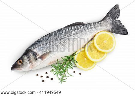 Sea Bass Fich Isolated On White Background With Clipping Path And Full Depth Of Field. Top View. Fla