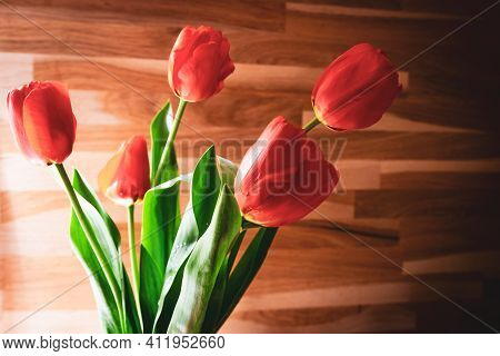 Fresh Tulip Blossoms In Room With Wooden Wall Texture Background.mothers Day Celebrations