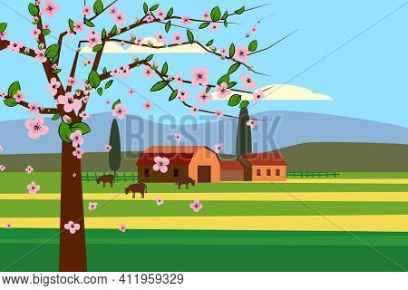 Spring Landscape Rural Countryside, Blossom Tree, Rural Nature Wwith Farmhouse, Barn And Grass Flowe