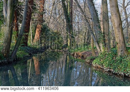 Early Morning Lights Of Dawn On A Small Creek Of The Park. Parc De La Tete D'or Is One Of The Larger