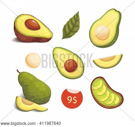 Set Realistic Fresh Avocado Fruit. Slice And Whole Avocados. Vegan Food Vector Illustration In Carto