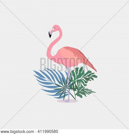 Flamingo Vector Flat Background Design For Fabric And Decor. Pink Flamingo On White Background. Simp