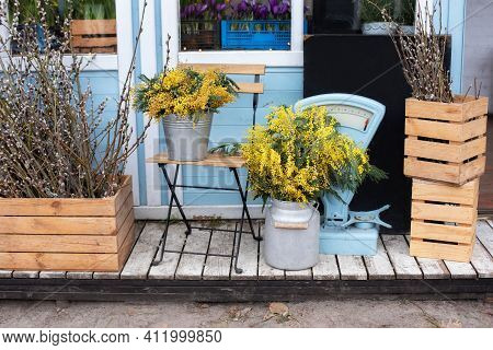 Flowers For Sale At Flower Shop. Wooden Porch Of House With Plants And Branches Yellow Mimosa. Cozy