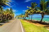 Highway next to turquoise Caribbean sea and palm trees in San Andres Colombia poster