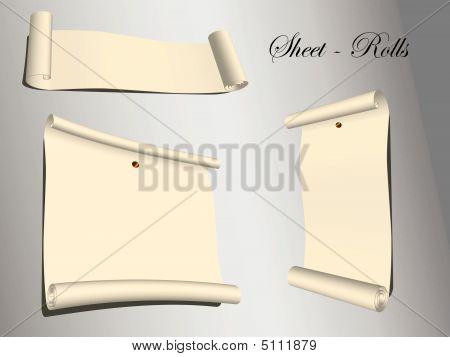 Blank Vector Sheet Rolls