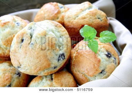 Fresh Blueberry Muffins