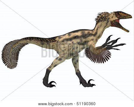 Deinonychus On White