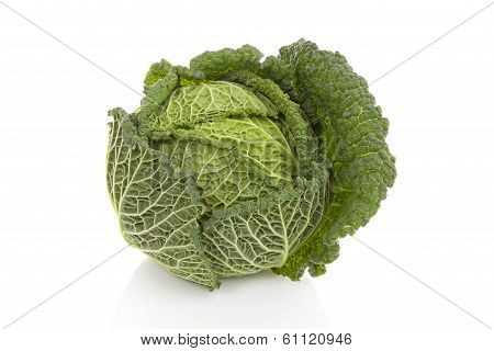 Fresh Green Cabbage Over White Background