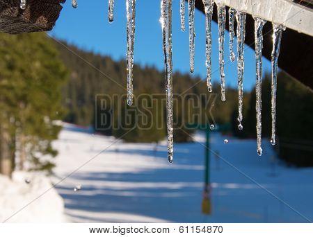 Icicles melting