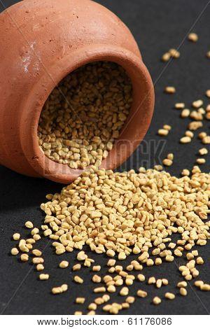 Fenugreek Seeds or Methi Seeds