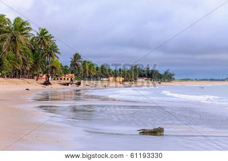 Beach At Low Tide, Pititinga, Rio Grande Do Norte (brazil)