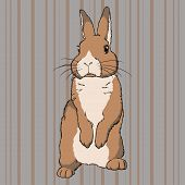 Vector illustration of fluffy brown  standing rabbit on striped background poster