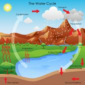 vector illustration of diagram showing water cycle poster
