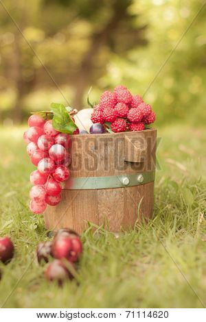 Grapes on wooden barrel