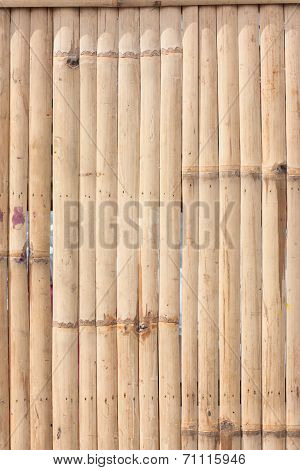 pattern of bamboo background