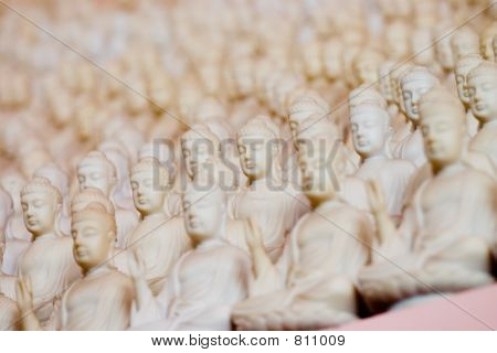 Thousands of Statue of Buddha