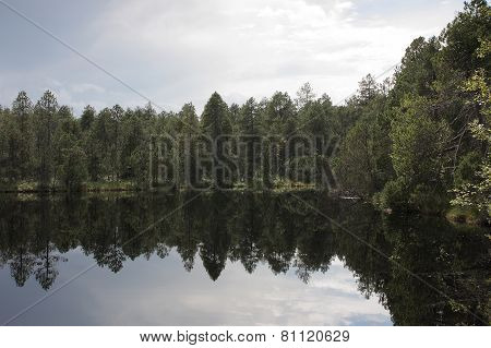 Lake In Forest With Reflection Of Trees And Sky
