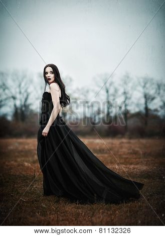 Beautiful Sad Goth Girl Stands In Autumnal Field. Grunge Texture Effect