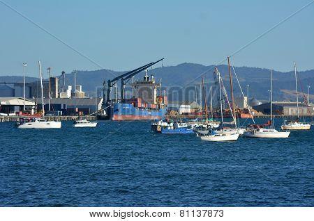 Port Of Tauronga - New Zealand