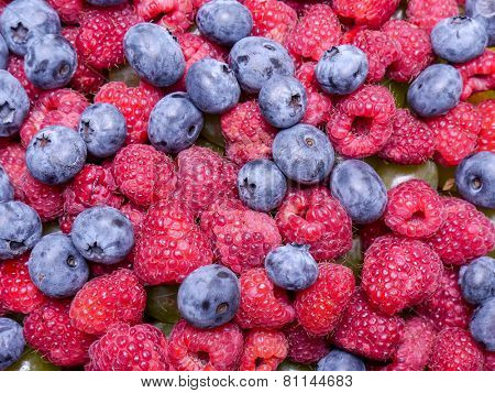 Mix of juicy and ripe raspberries and cowberries