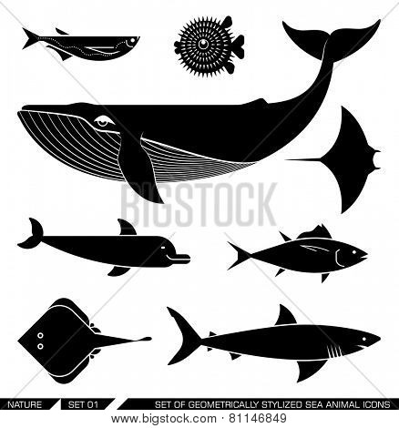 Set of various sea animal icons: whale, tuna, dolphin, shark, fish, rajiforme. Vector illustration.