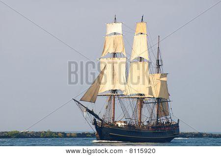 Bounty Under Sail