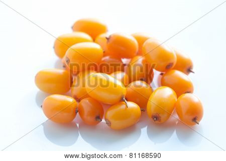 Sea-buckthorn Berries On A White Background. Close Up. Ingredient Sea Buckthorn Oil.