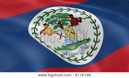 Belizean Flag In The Wind