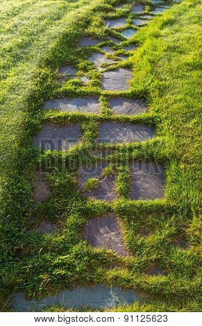 An old flagstone walkway with grass growing between the stones.